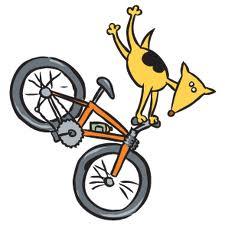 mountain bike dog