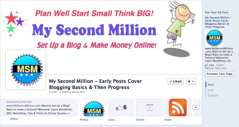 MSM facebook page