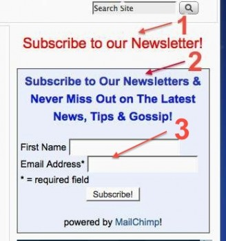 customize Mailchimp subscribe form