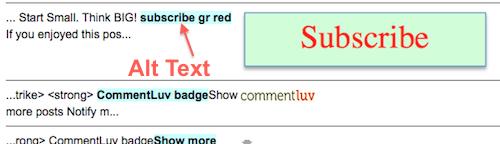 image alt tag checker tool