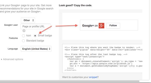 small google+ badge